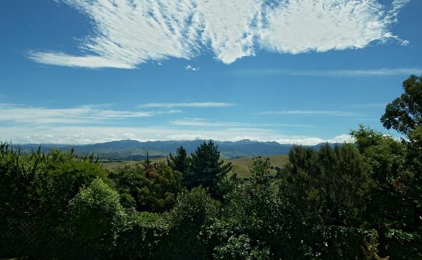 Masterton NZ by possumhead