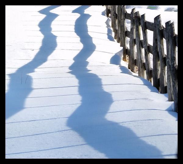 fence by bearmtn