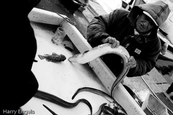 Fisherman by engelsh2003