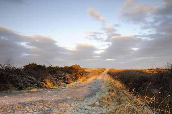 Old bog Road by tomf148