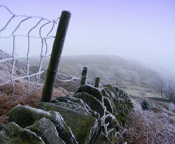 frozen, still,and silent... by rosiebobo