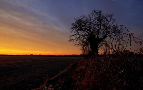 Frosty Sunrise by HilaryWhite