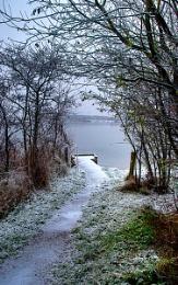 Northumberland Winter Scene