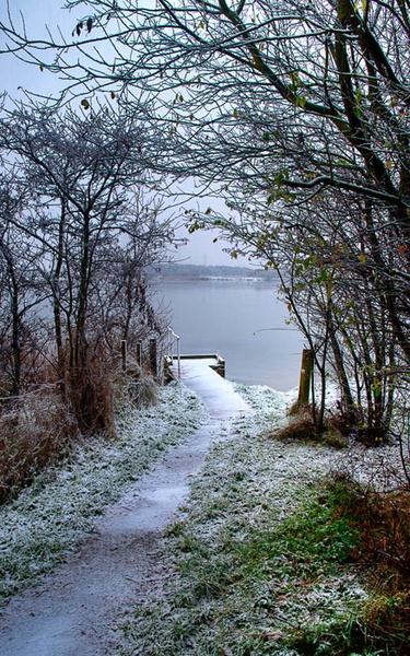 Northumberland Winter Scene by stormcrowuk