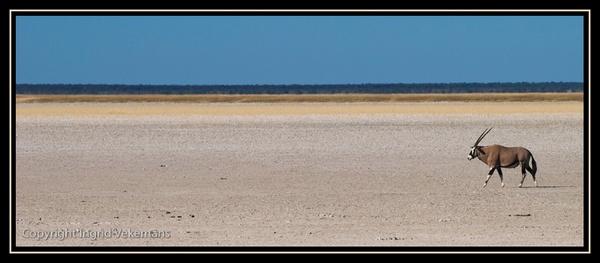 I\'m A Poor Lonesome... by IngridVekemans