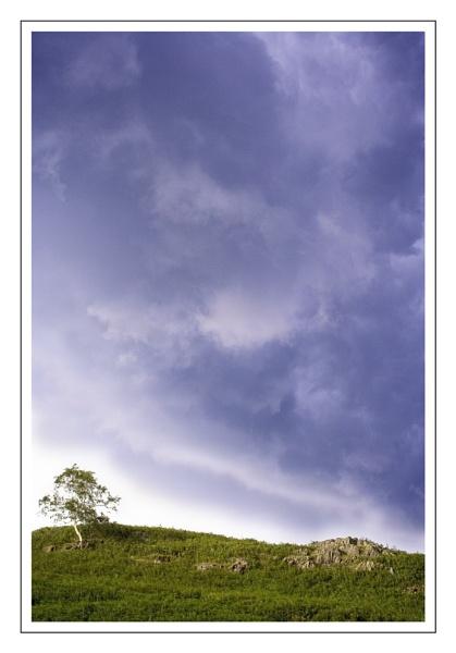 Stormy skies by firzhugh