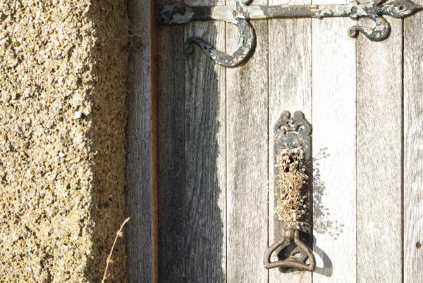 Oak Door by barney1