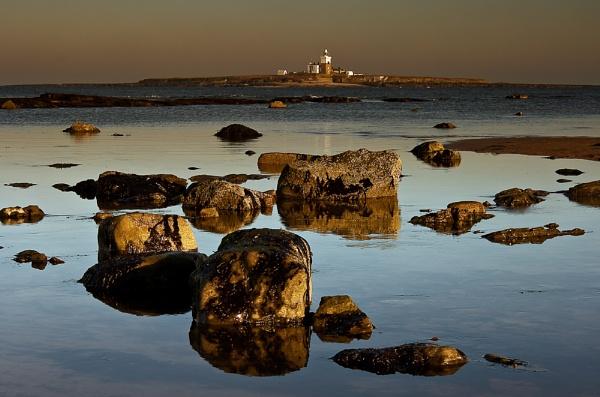 Coquet Island by lynks