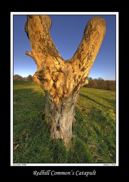 Redhill Common\'s Catapult by sjones