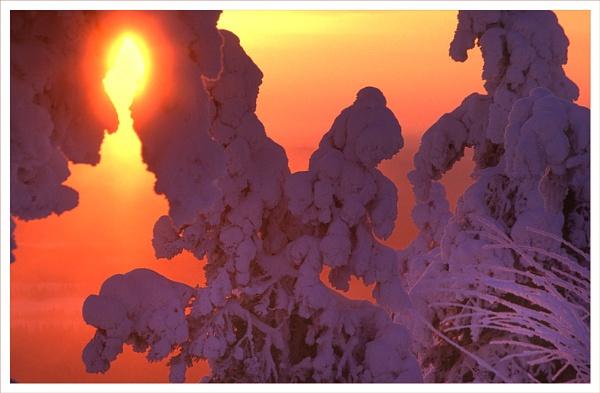 Frozen Dawn. by rontear