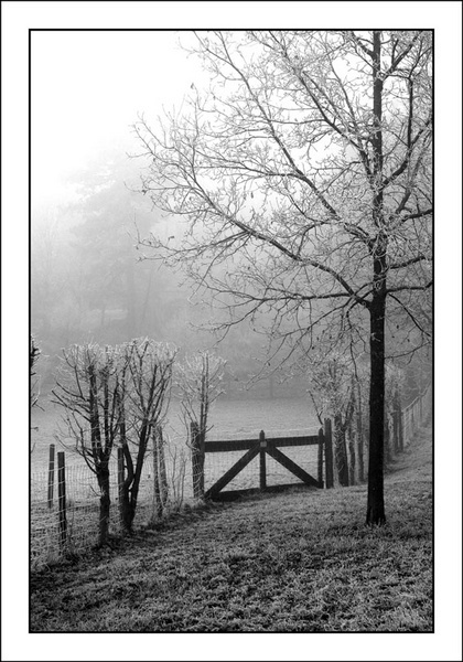 Closed gate by paulblignaut