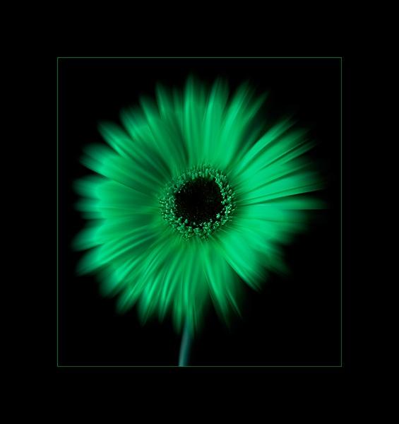 Green by bigheart.