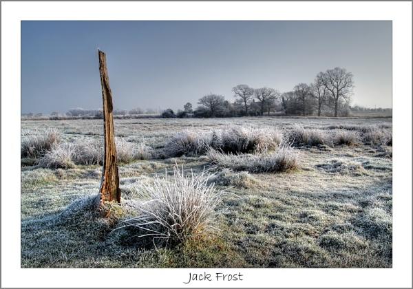 Jack Frost by Gaz_H