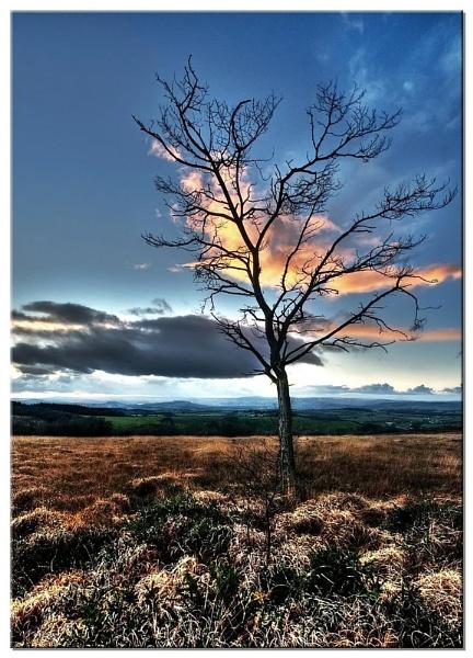 Little Haldon Sunset #2 by RockArea