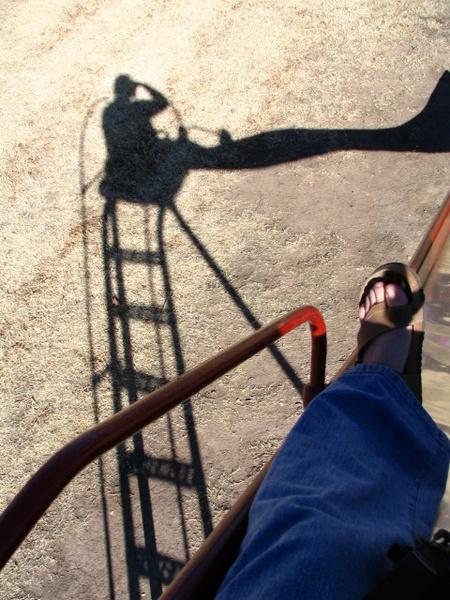 Shadow by dreamflower