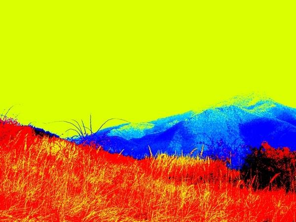 A colourful trip.. by xanita
