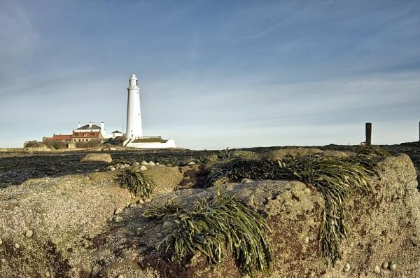 St Marys Lighthouse III by DJLphoto