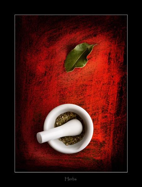 Herbs by wyatturp