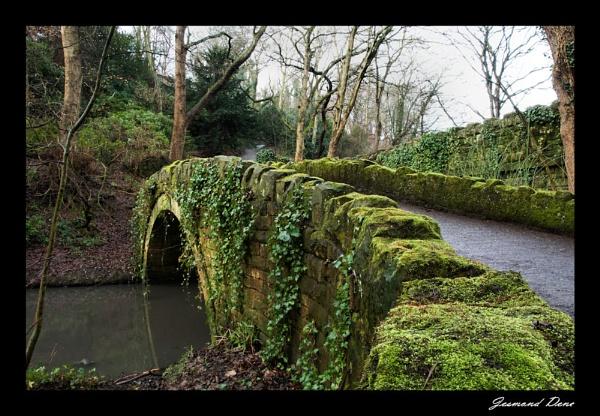 Bridge by lemmiwinks