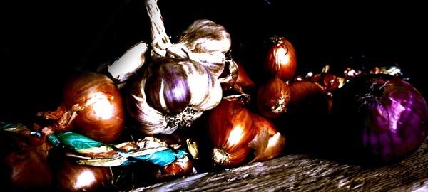 onions by Naidie