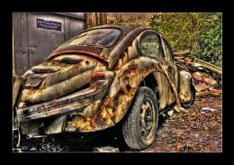 Bashed up Beetle