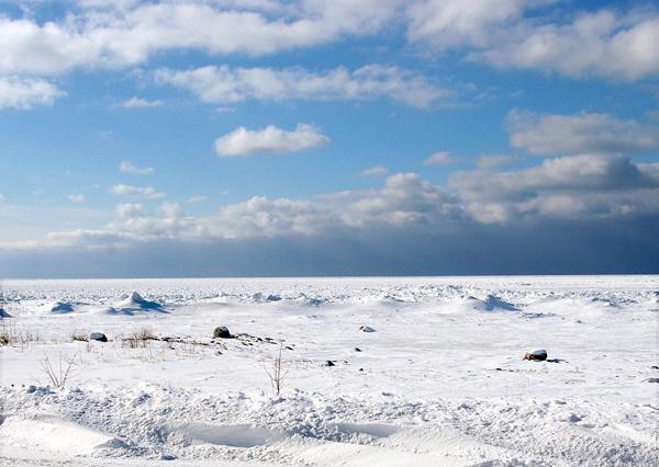 winter by margo