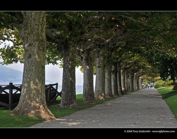 Bellagio, Lake Como by tonyfish