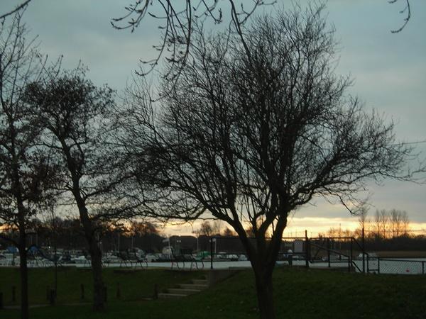 Oulton Broad in Winter ( no snow! ) by adrianj