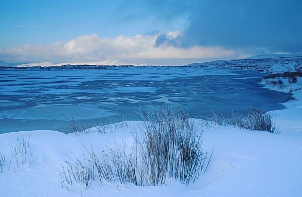 Blue Heaven. by Buffalo_Tom