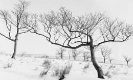 winter in denshaw 2.