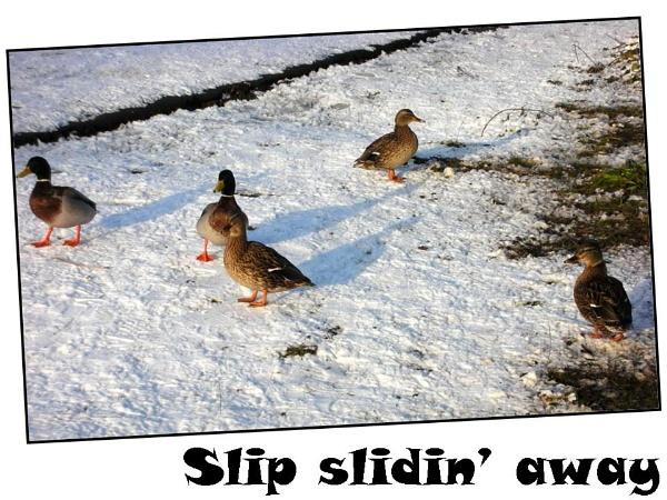 Slip slidin\' away by Rach1970