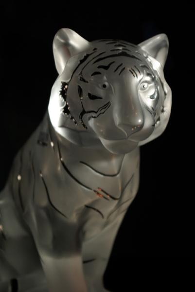 Glass Tiger by Graham15