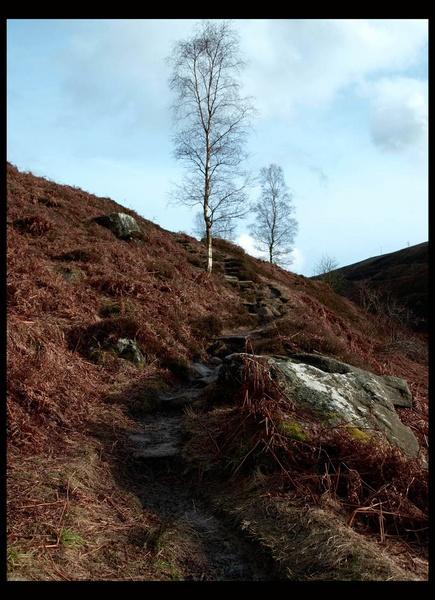 hillside steps 2 by texon88