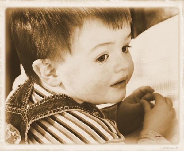 My Boy 2 by torres99