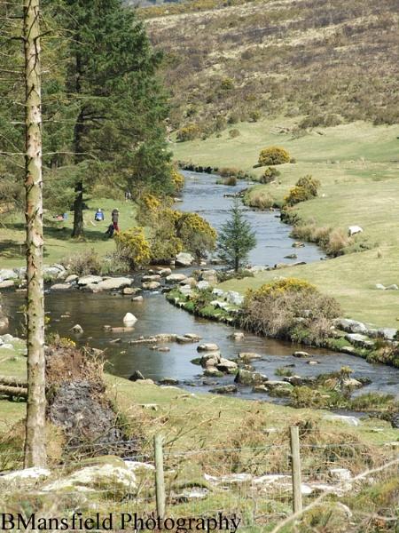 Dartmoor River by benmansfield2005