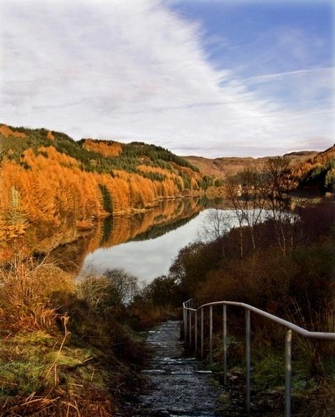 Autumn Glory by abesad