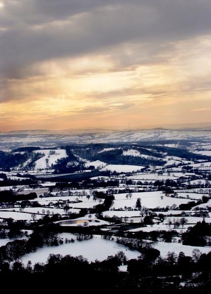 The Shire by Kim Walton