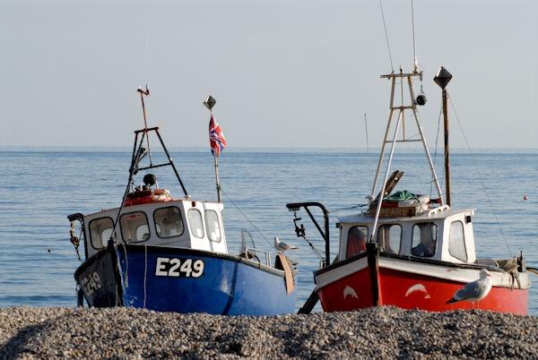 2 Boats at Bere by sebroadbent