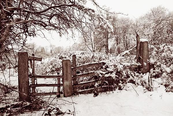 Winter Gate by scrimmy