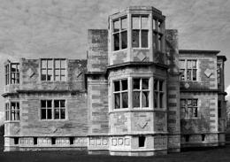 Livedon Newbuild