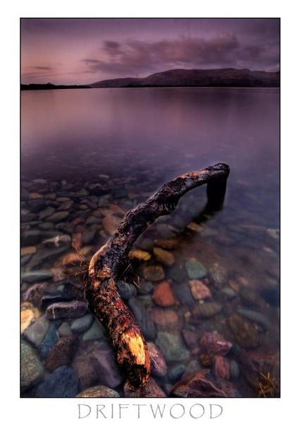 Driftwood by allan_j