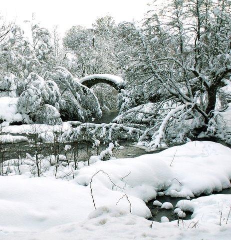 Winter at Glen Livet by jacqui123