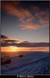 A Winter Dawns