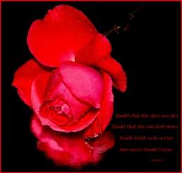 Happy Valentine's Day Everyone