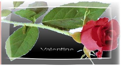 Valentine Rose by sanjan