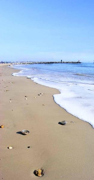 sea shore by natbow
