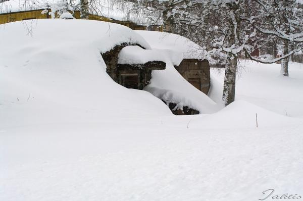 cellars by jaktis