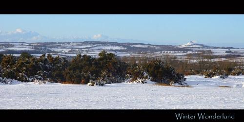 Winter Wonderland by Meg