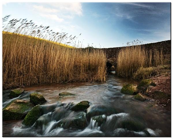 Archbrook by RockArea