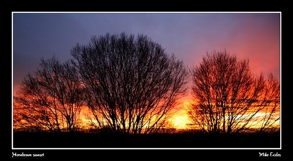 Hornbeam sunset by oldgreyheron